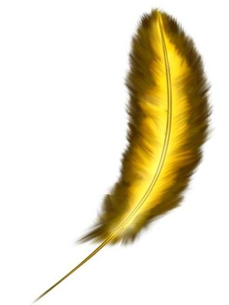 золотое перо